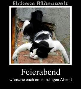 Feierabend Und Wochenende : feierabend lustige sachen pinterest feierabend katzen und gute nacht ~ Orissabook.com Haus und Dekorationen