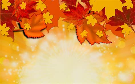 Fall Backgrounds Yellow by Autumn Fall Background 183 Free Image On Pixabay