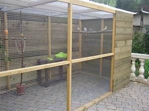 Construire Enclos Pour Chats : voli re ext rieure projets essayer voli re d 39 oiseaux voliere exterieur et cage chat ~ Melissatoandfro.com Idées de Décoration