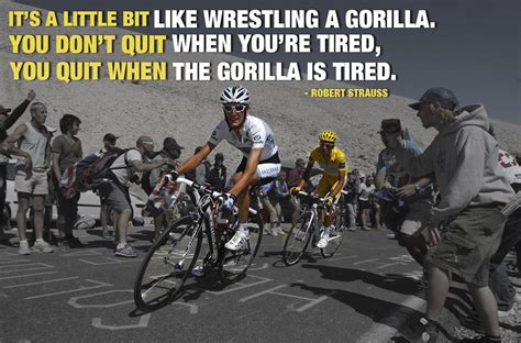 cycling quotes pain  love bicycling