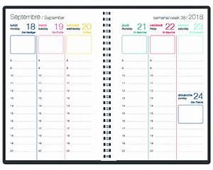 Agenda 2018 Semainier : agenda semainier polygones 2018 10x15 w 4 motifs 10 65 ~ Teatrodelosmanantiales.com Idées de Décoration