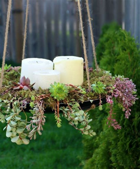 succulent planting ideas  tutorials succulent garden ideas balcony garden web