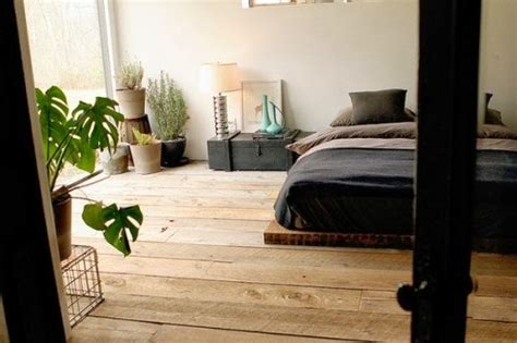 chambre plante crea vegetal les plantes dans une chambre