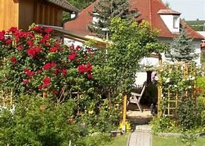 Spalierobst Als Sichtschutz : spalierpflanzen welche sind wirklich geeignet ~ Orissabook.com Haus und Dekorationen