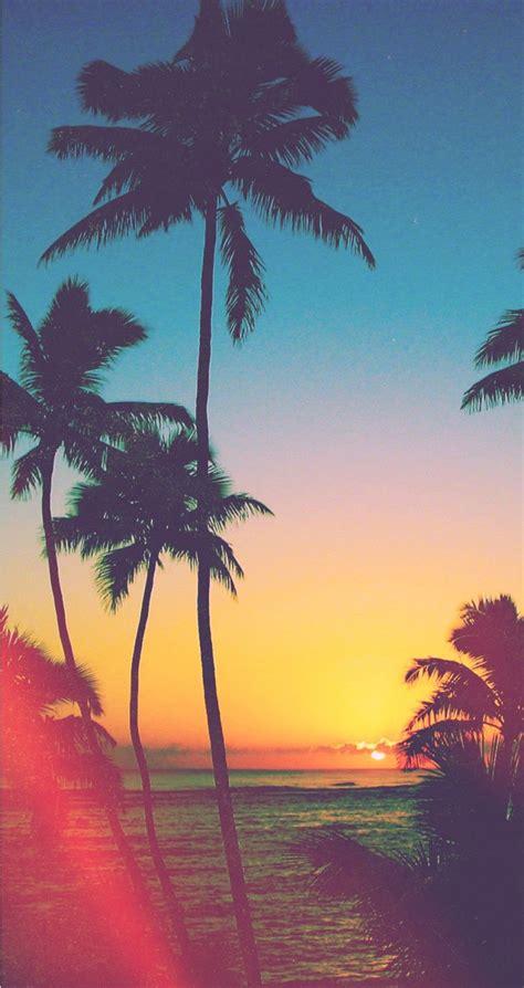 tropical beach tap   wonderful beachseaocean
