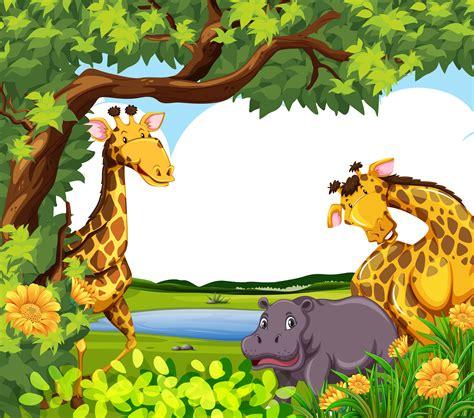 giraffes  hippo   pond   vectors
