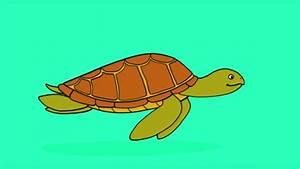 Comment Dessiner La Mer : apprendre dessiner une tortue de mer youtube ~ Dallasstarsshop.com Idées de Décoration