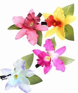 Schöne Orchideen Bilder : orchideen bl ten haarclip pin up 50s haarbl te haarspange ebay ~ Orissabook.com Haus und Dekorationen