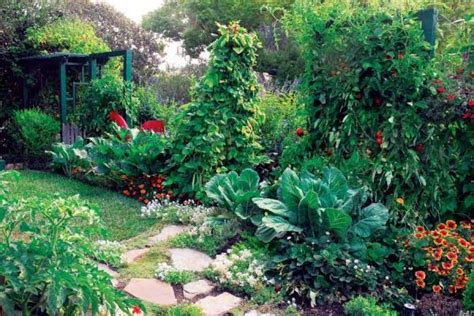 square garden food idea here arizona backyard landscaping pictures 100 bill