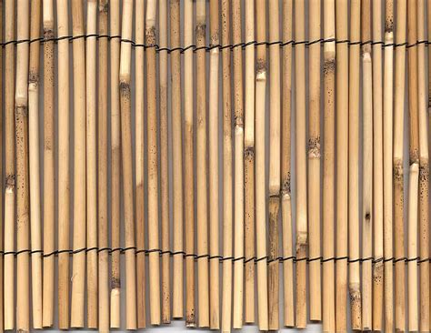 Install Rolled Bamboo Fencing Design Ideas