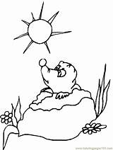 Groundhog Coloring Pages Prairie Dog Groundhogs Gopher Sheets Patterns Embroidery Activity Cartoon Clipart Printable Print February Happy Cliparts Winter Shadow sketch template