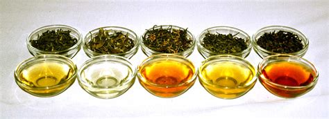 Caffeine in Different Types of Green Tea