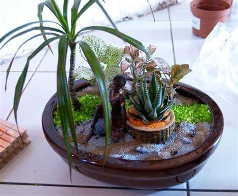 miniature garden designs fairy gardens defining
