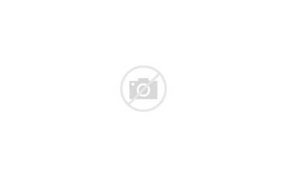 Lower Complete Ar Receiver Anodized Aero Standard
