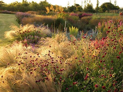 piet oudolf gardens piet oudolf stuartshieldgardendesign