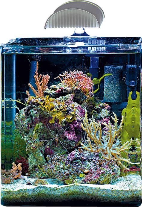 nitrate aquarium eau de mer aquarium eau de mer nano 60 l