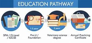 Veterinary Science Course In Malaysia Eduadvisor