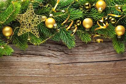 Seasonal Holiday Wallpapers Amazing Phone Cool Branches