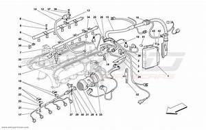Ferrari F355 Engine Wiring Diagram Bmw 600 Engine Wiring