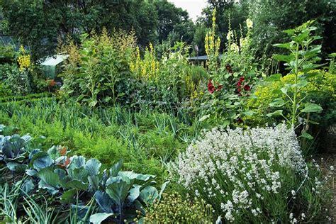 Pflanzen Nordseite pflanzen nordseite pflanzen f r beet an der nordseite mein sch ner