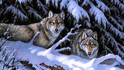 Wolf Wolves Snow Couple Wallpapers Painting Winter