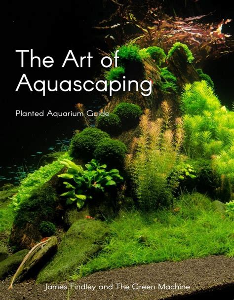 Aquascape Plants by The Of Aquascaping Book By Findley Planted