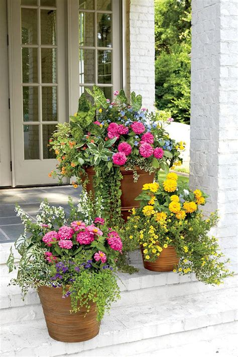 121 Container Gardening Ideas  Porch Steps, Traditional