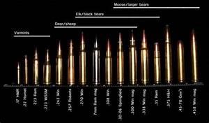 Rod Barrel Bullet Caliber Chart For Intended Prey