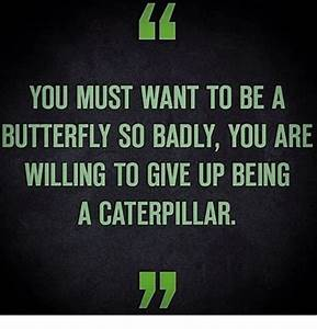 YOU MUST WANT TO BE a BUTTERFLY SO BADLY YOU ARE WILLING ...