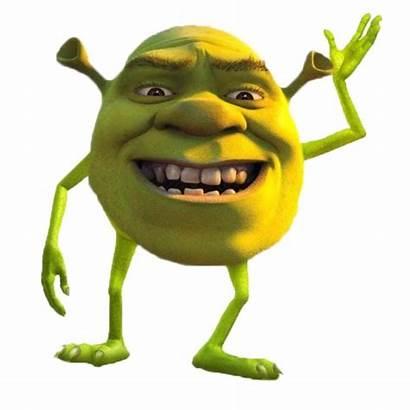 Shrek Funny Meme Lol