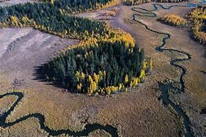 Riding Mountain National Park  Manitoba  Canada
