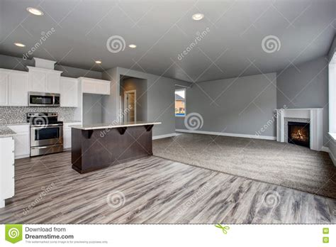 Grey Kitchen And Living Room