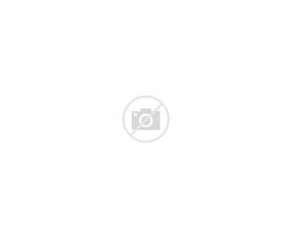 Catch Ladder Shelf