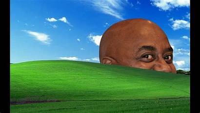 Memes Meme Funny Wallpapers Laptop Backgrounds Windows