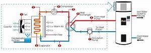 Electric Hot Water Tank Wiring Diagram Webtor Me Inside
