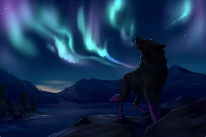 Wolf Northern Lights Wolves Mountains Wallpaperup Wallpapers