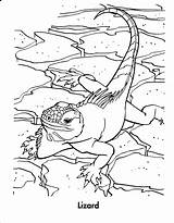 Coloring Pages Lizard Reptile Printable Reptiles Animals Snake Animal Chameleon Rabbit Coloringpages101 Monkey Olds Mammal Amphibian Template sketch template