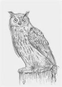 Eagle Owl Sketch Drawing