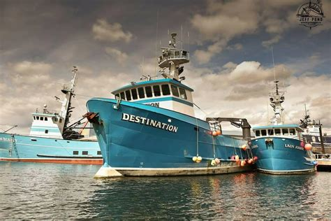 The Destination Alaska Crab Boat by Witness Hearings Start Monday In F V Destination