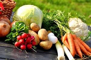 Osteoporose behandeling en de rol van voeding - fitplein