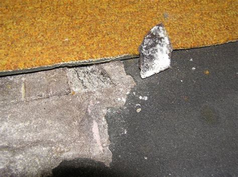 Asbestos In Carpet Padding   Carpet Vidalondon