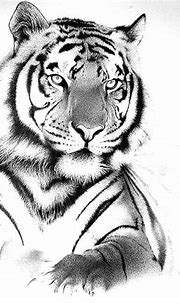 25 Powerful Tiger Tattoos For Men and Women # ...