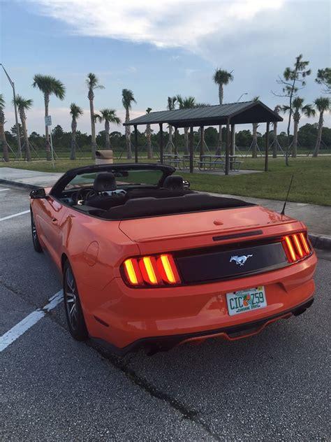 Car Rentals In Florida by Avis Rent A Car 12 Photos 111 Reviews Car Rental 1