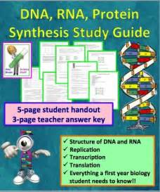 DNA and RNA Protein Synthesis Worksheet Answer Key