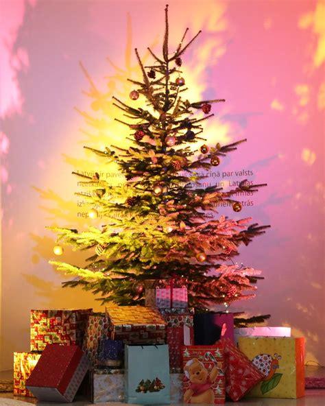 Bērnu Ziemassvētku eglīte | 18. decembrī Ārlietu ...