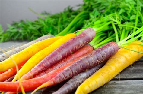 colorful carrots the history of carrots and carrot colors snaplant