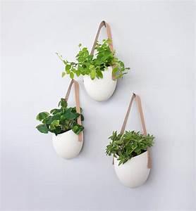 Plantes à Suspendre : 10 jardini res suspendues pots de fleurs suspendre ~ Premium-room.com Idées de Décoration