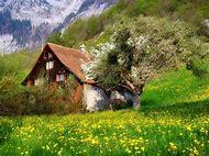 Cottage Desktop Wallpaper Spring Flowers