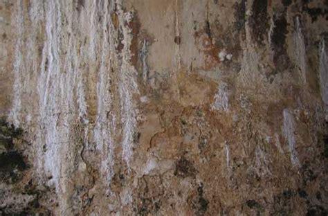 damaged wall textures   designs designbeep