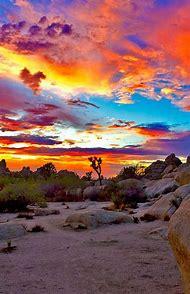 New Mexico Desert Beautiful